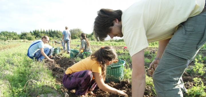 Gartenmitarbeitswoche mit dem Gartenteam