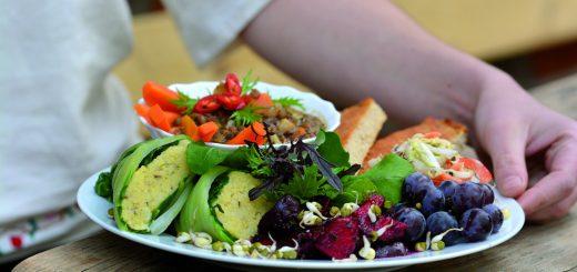 Tagesworkshop Ernährung vor Ort