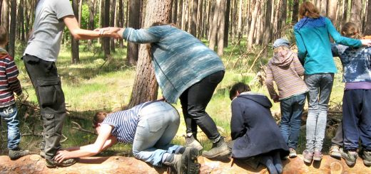Wald und Erlebniswochenende