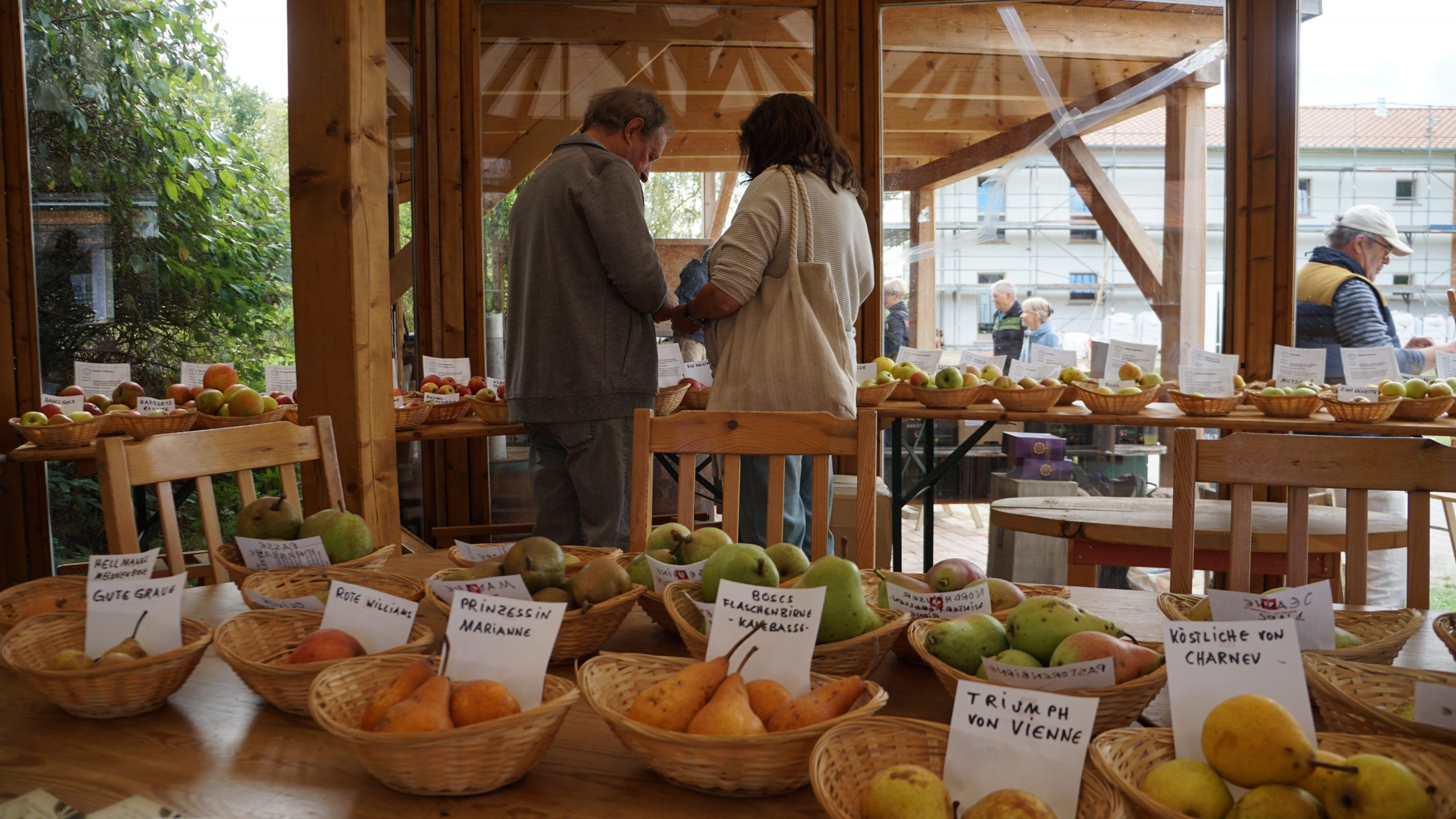 Expo de pommes